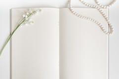 Pagina vuota del vecchio libro con lo spazio della copia Fotografie Stock Libere da Diritti