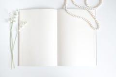 Pagina vuota del vecchio libro con lo spazio della copia Fotografia Stock
