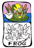 paginación del libro de colorante: rana ilustración del vector