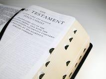Paginación del NewTestament-Título Foto de archivo libre de regalías