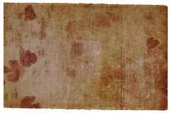 Paginación marrón vieja con el detalle de la flor Imagen de archivo libre de regalías
