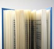 Paginaciones Fotografía de archivo libre de regalías