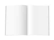 Pagine in bianco dello scomparto - XL Immagini Stock