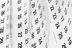 Pagine del calendario Immagine Stock