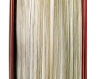 Pagine del libro Fotografie Stock