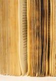 Pagine del vecchio libro Immagine Stock