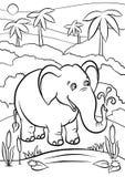 Pagine di coloritura animali Elefante sveglio illustrazione vettoriale