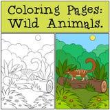 Pagine di coloritura: Animali selvatici Piccolo numbat sveglio sul ceppo illustrazione vettoriale