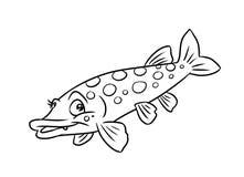 Pagine di coloritura dell'illustrazione del pesce del luccio illustrazione vettoriale