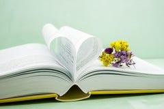 Pagine di un libro curvo in una forma del cuore, cottonweed fotografie stock