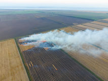 Paglia bruciante nei campi dopo avere effettuato il raccolto del grano Immagini Stock Libere da Diritti
