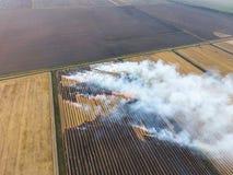 Paglia bruciante nei campi dopo avere effettuato il raccolto del grano Immagini Stock