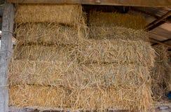 Paglia compressa dal fondo del riso nell'agricoltura in Tailandia Fotografia Stock Libera da Diritti
