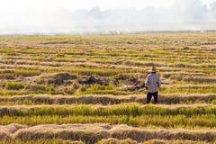 Paglia dell'ustione degli agricoltori nel campo Fotografia Stock Libera da Diritti
