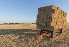 Paglia su un carretto rosso sul campo di grano con il tramonto Immagine Stock
