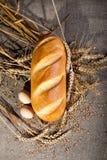 Pagnotta con le uova Fotografie Stock Libere da Diritti