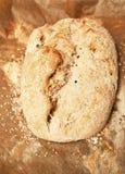 Pagnotta del pane Immagine Stock Libera da Diritti