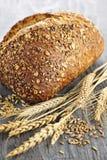 Pagnotta del pane del multigrain Immagini Stock Libere da Diritti
