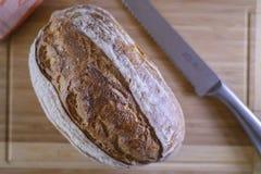 Pagnotta del pane di lievito naturale o della maia Fotografia Stock Libera da Diritti