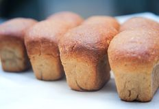 Pagnotta di pane su priorità bassa bianca fotografie stock libere da diritti