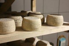 Pagnotte del formaggio che invecchiano sugli scaffali Fotografie Stock