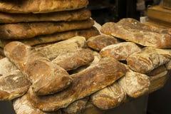Pagnotte del pane di ciabatta Fotografie Stock Libere da Diritti