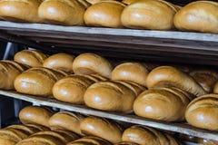 Pagnotte di pane crostoso fresco sugli scaffali multipiani di legno Fotografie Stock