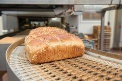 Pagnotte di pane nella fabbrica Fotografie Stock Libere da Diritti