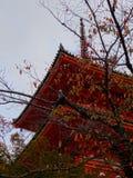 Pagod av den Kiyomizu-dera templet royaltyfri foto