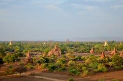 Pagod i Bagan Archaeological Zone på Myanmar Arkivbild