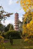 Pagod i Kew trädgårdar Arkivfoton