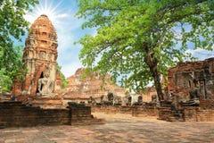 Pagod- och Buddhastatus på WAT MAHATHAT Ayutthaya, Thailand Arkivfoton