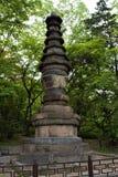 Pagod på den Changgyeonggung slotten, Seoul, Korea royaltyfri foto