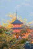 Pagod på på Kiyomizu-dera (en oberoende buddistisk tempel i östliga Kyoto ) i höst Royaltyfri Bild
