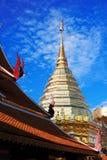 pagoda Стоковые Изображения RF