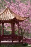 Pagoda Imagem de Stock