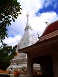Pagoda 2 Royalty Free Stock Photo