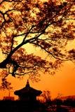pagoda Arkivbild