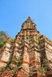 Pagoda. In thai temple at Ayuttaya royalty free stock images