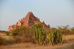 pagoda Zdjęcie Stock