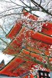 Pagoda avec des fleurs de cerisier images stock
