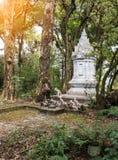Pagoda bianca con la statua dell'elefante Fotografia Stock Libera da Diritti