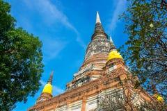 The Pagoda and Buddha Status at Wat Yai Chaimongkol, Ayutthaya,. Thailand royalty free stock photo