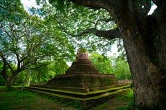 Pagoda budista Fotos de archivo