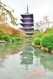 Pagoda and carp fish at Toji temple in Kyoto stock photography