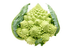 Pagoda Cauliflower Stock Photography
