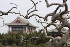 Pagoda China del monasterio Imagenes de archivo