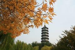 Pagoda china en otoño foto de archivo