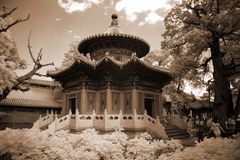 Pagoda in Chinese garden Stock Photo