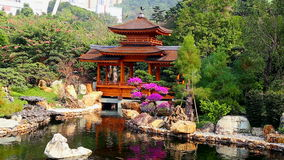 Pagoda in chinese zen garden stock video